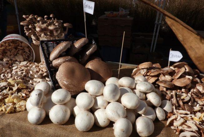 farmers-market-2278597_1920-1024x691